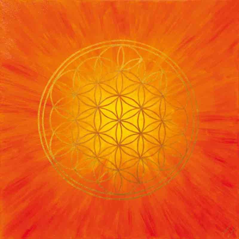 Orange leuchtende Blume