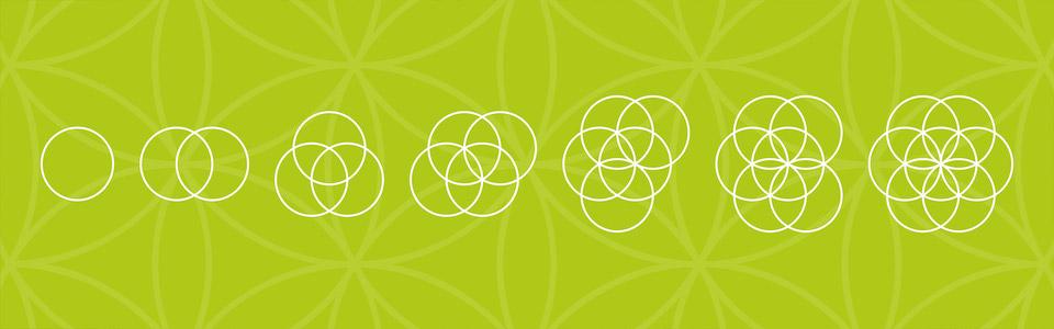 Blume des Lebens: die Heilige Geometrie
