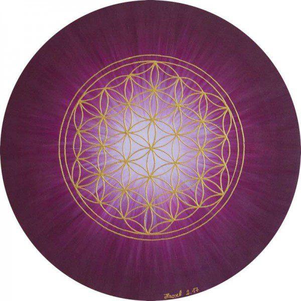 Blume des Lebens Bild - Strahlenblume, bordeaux, rund