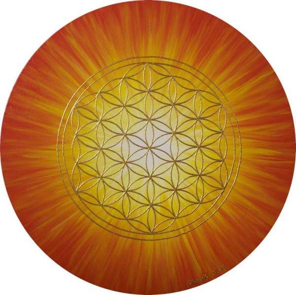 Blume des Lebens Bild: Strahlenblume, Orange-Gelb