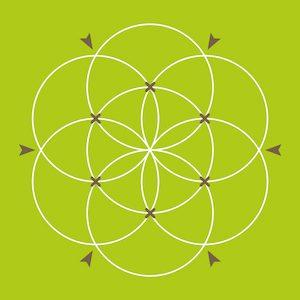 Blume des Lebens zeichnen - Schritt 8