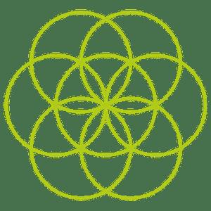Heilige Geometrie - Blume des Lebens Kreis 7