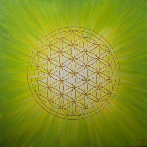 Blume des Lebens Bild: Strahlenblume, Grün - Gelb - Weiß