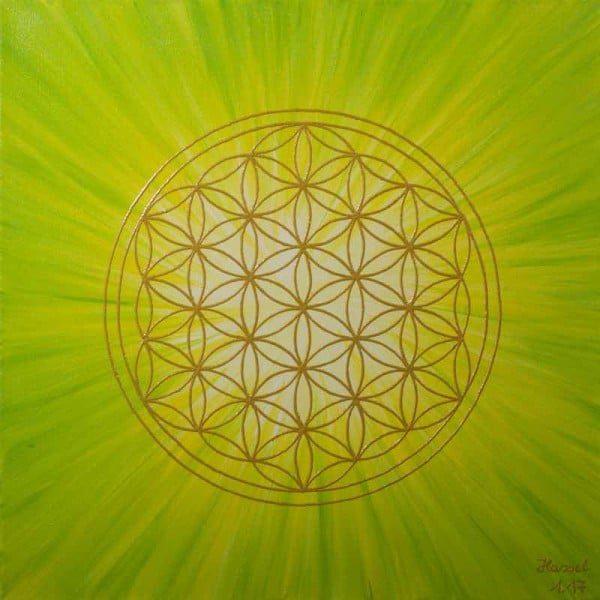 Blume des Lebens Bild - Strahlenblume, Grün-Gelb