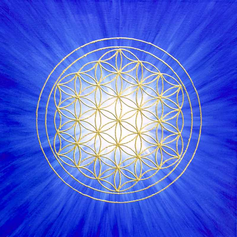 Blume des Lebens Bild - Strahlenblume, Blau