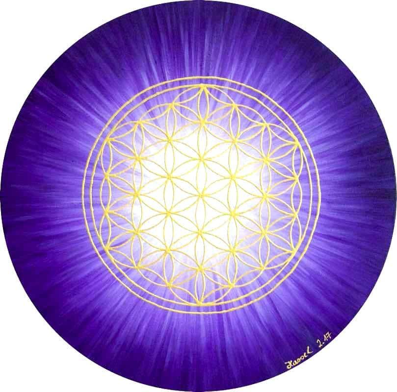 Blume des Lebens Bild - Strahlenblume Violett rund