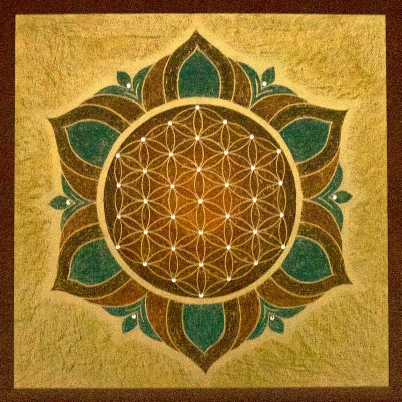Blume des Lebens Bild: Lotusblüte
