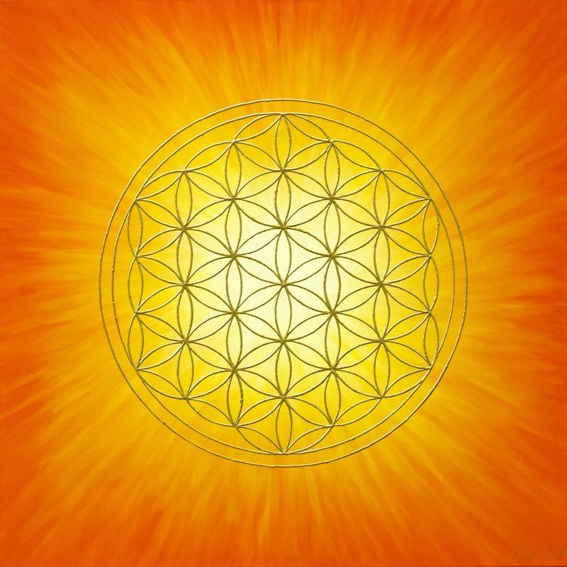 Blume des Lebens Bild - Strahlenblume Orange-Gelb