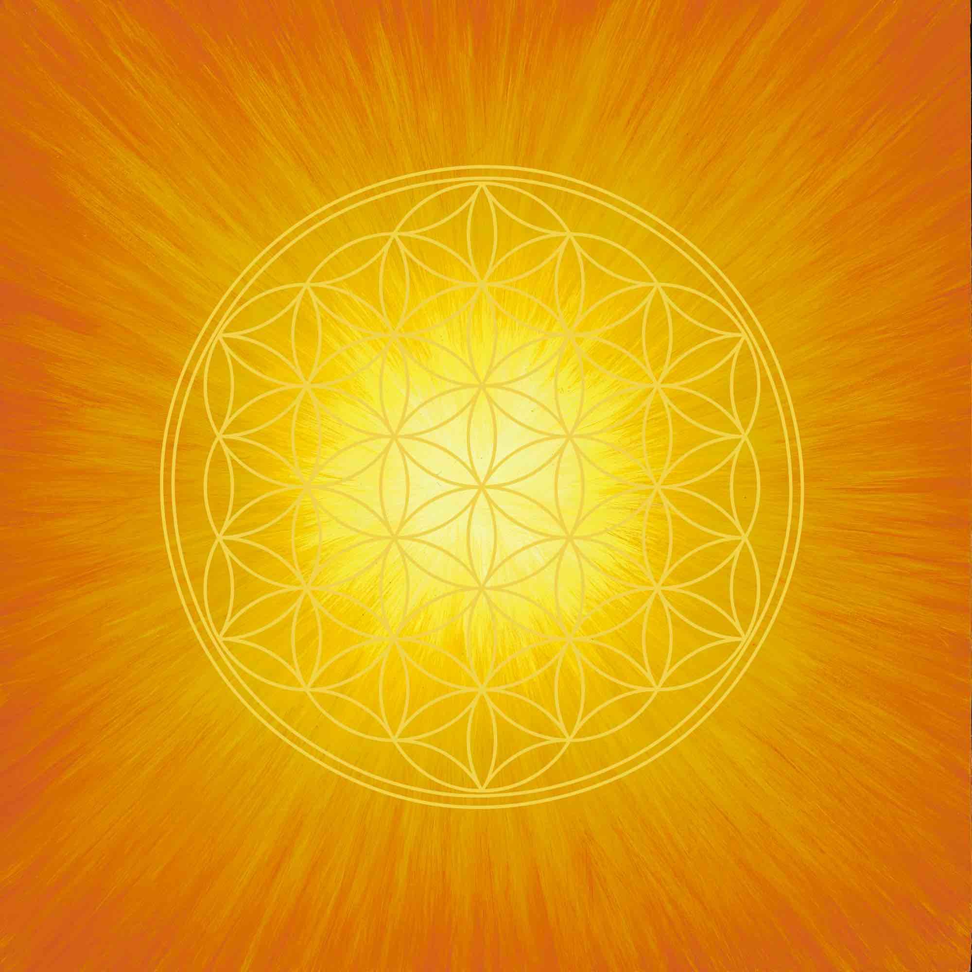 Leinwanddruck - Blume des Lebens - Strahlenblume Orange