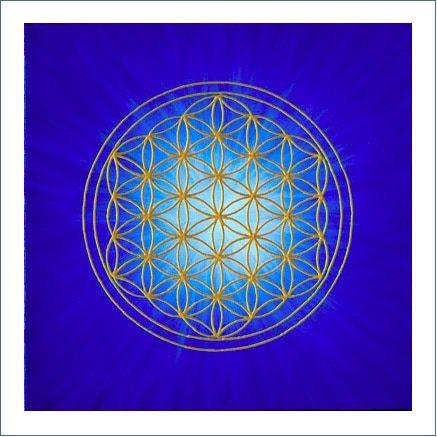 Poster - Blume des Lebens - Strahlenblume Blau