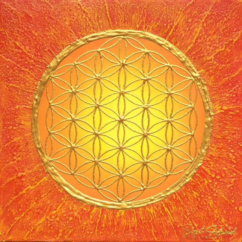Blume des Lebens Bild Sunlight